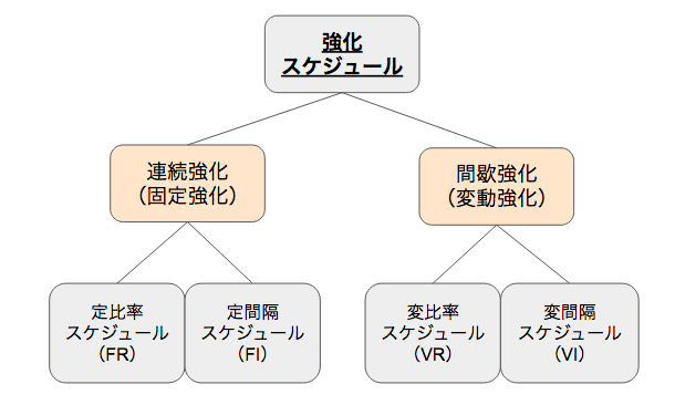強化スケジュールの分類