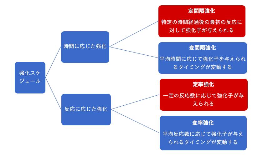 kyoka-schedule